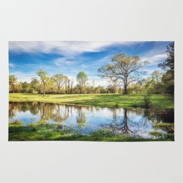 Country Pond Rug