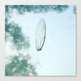 Word on a Wing Canvas Print