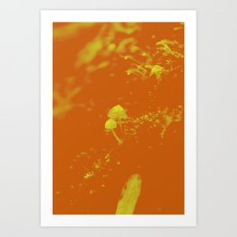 chlorine mushroom Art Print
