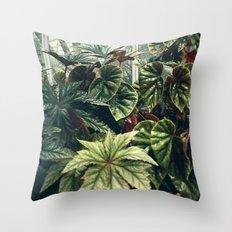 Beautiful Begonias Throw Pillow