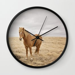 Solitary Horse in Color Wall Clock