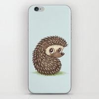 hedgehog iPhone & iPod Skins featuring Hedgehog by Toru Sanogawa