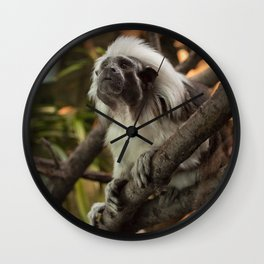 Wise Old Monkey Wall Clock