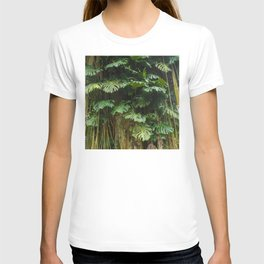 Exotic Tropical Jungle Palm Leaves and Vines T-shirt