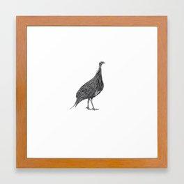 Guineafowl Framed Art Print