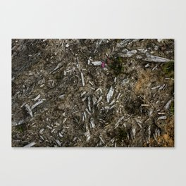 Heather Bell & Wood Fragments Canvas Print