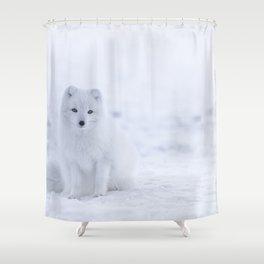 Arctic Fox (Color) Shower Curtain