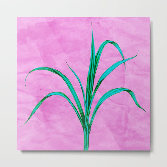 Potted plant with pink Metal Print