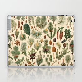 Vintage Pinecones Designs Collection Laptop & iPad Skin
