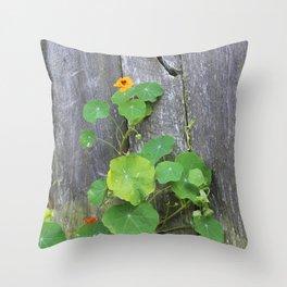 The Garden Wall Throw Pillow