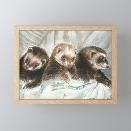 Lovely ferrets Framed Mini Art Print