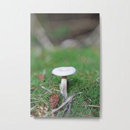 Mushroom on forest floor Metal Print