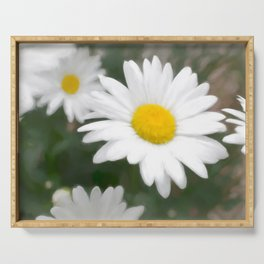 Daisies flowers in painting style 6 Serving Tray