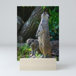 Standing Proud. Mini Art Print