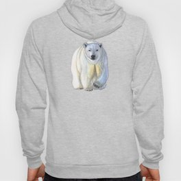 Polar bear in the icy dawn Hoody