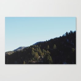 It's Beautiful, I Tell You. Canvas Print