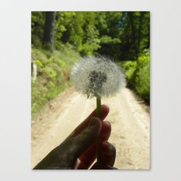 A Wish for the Road Canvas Print