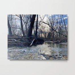 Creek Scene, Cuyahoga Valley Cleveland Ohio Metal Print