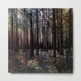 The Magical Woodland Metal Print