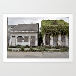 Living Roof - New Orleans, Louisiana Art Print