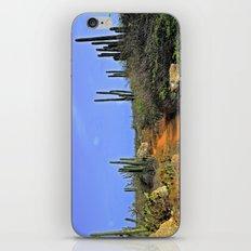 Desert Pathway iPhone & iPod Skin