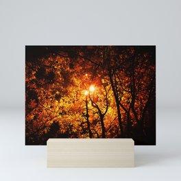 Autumnal Luminescence Mini Art Print