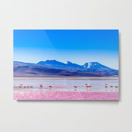Pink Flamingos at Laguna Colorada in Bolivia Metal Print