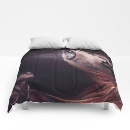 Two Thirds Comforters