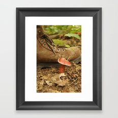 Mushroom Framed Art Print
