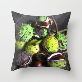 Autumnal Still Life with Chestnuts Throw Pillow