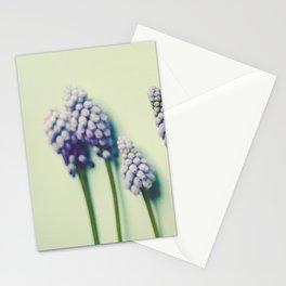 Pretty Blue Flowers Stationery Cards