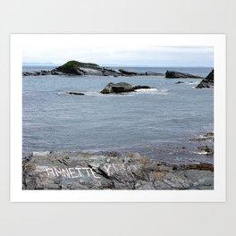 Gull Island Art Print