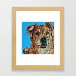 Cody the Golden Labrador Mix Dog Portrait Framed Art Print