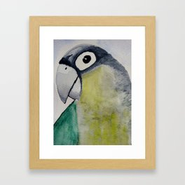 parrot head Framed Art Print