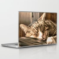 tigers Laptop & iPad Skins featuring Sleeping Tigers by Shalisa Photography