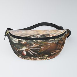 Crab Fanny Pack