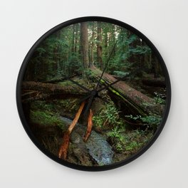 Humboldt Redwoods State Park Wall Clock