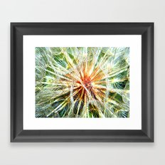 Up Close and Personal Dandelion Framed Art Print