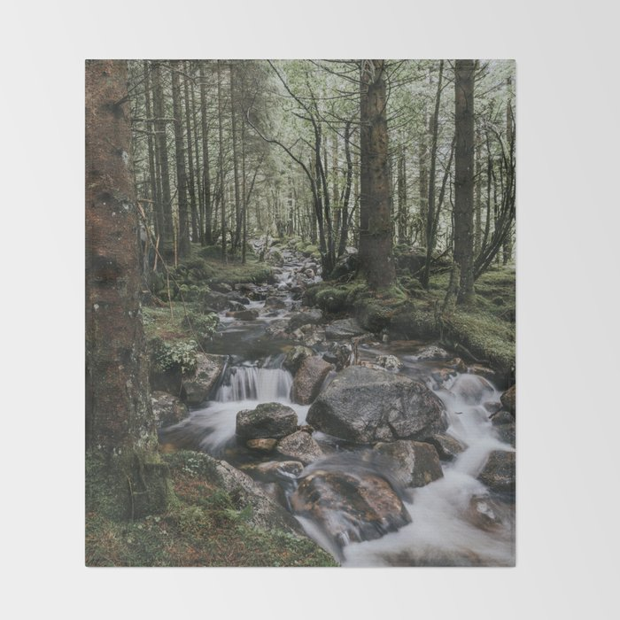 The Fairytale Forest - Landscape and Nature Photography Throw Blanket