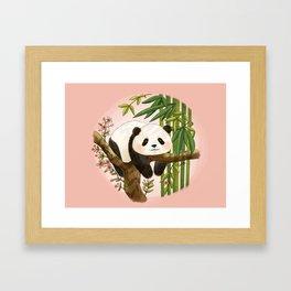 Panda under sunlight - Pink Framed Art Print