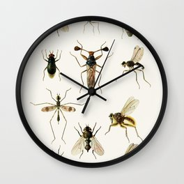 Insects Wall Clock