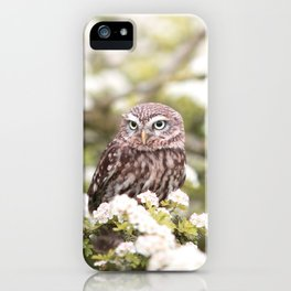 Chouette nature iPhone Case