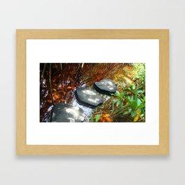 Trail to cenote Framed Art Print