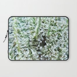 Snowman Sativa Strain Berner Girl Scout Cookies Genetics Laptop Sleeve