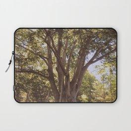 big tree energy Laptop Sleeve