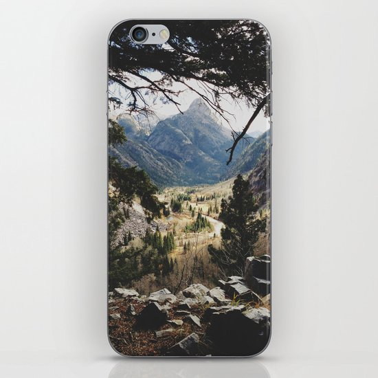 San Juan Forest iPhone & iPod Skin