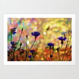 Summer Field Impression 2 Art Print