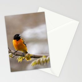 The Colors of Spring Stationery Cards
