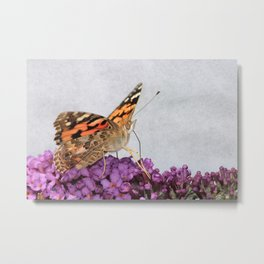 Painted Lady Metal Print