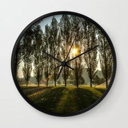 Penn State Arboretum Wall Clock